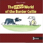 crazy-border-collie-vs